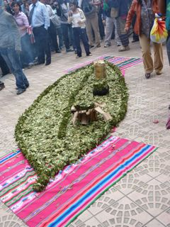 Massive coca leaf made out of coca leaves