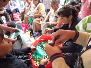bagging and sorting coca leaves