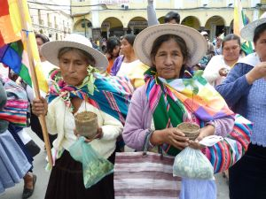 Marchers with coca plants