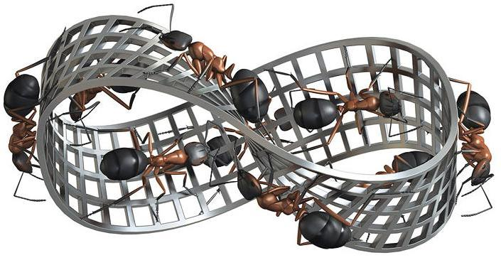Ant climb on Möbius strip in image inspired by Robert Lea inspired by MC Escher